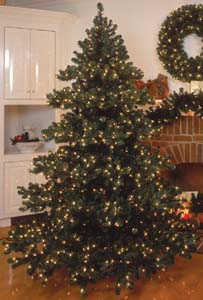 Prelit, Pre-lit or Prelighted Artificial Chesapeake Fir Christmas Trees Wreaths & Garland
